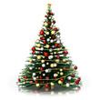 Natale_Albero di Natale_2014001