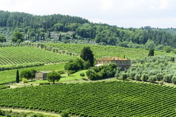 Chianti, Tuscany