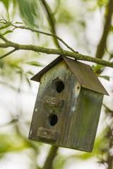 Nichoirs disséminés dans le jardin pour abriter les oiseaux