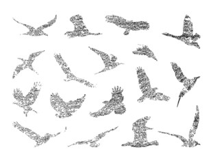 collection of birds. vector eps 8