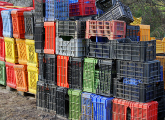 plastic box for collecting fruits and grapes on the farm