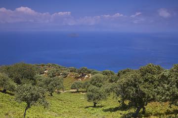 Sea view and mountain vegetation