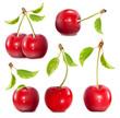 Ripe red cherries.