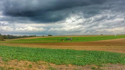 Dramatischer Himmel über den Feldern in der Pfalz