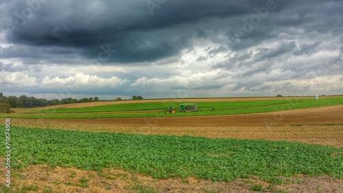canvas print picture Dramatischer Himmel über den Feldern in der Pfalz