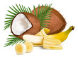Coconuts and ripe yellow bananas