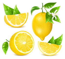 Fresh lemons with leaves and blossom.