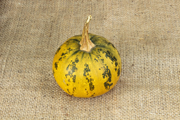 Pumpkin on burlap background
