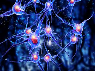 3d Illustration of a nerve cell