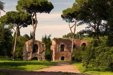 Roman ruins on the Palatine Hill in Rome