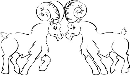 Two rams butting