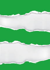 Green ripped paper