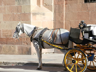 Carriage waiting for passengers in Malaga, Spain