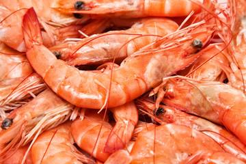 closeup of prawns