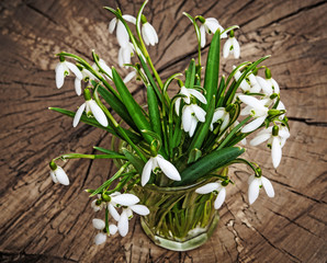 snowdrop flowers on an old table