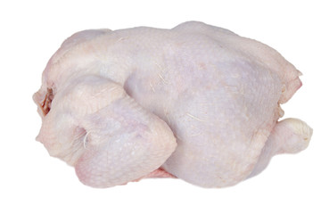 Fresh whole chicken isolated on white background