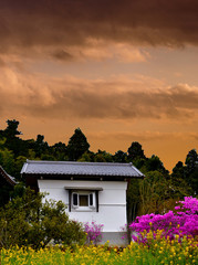 Edo period old house in Japan with yellow and purple flowers