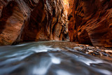 The narrows trail, Zion national park, Utah