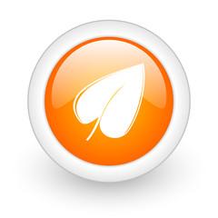 leaf orange glossy web icon on white background.