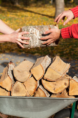 Wheelbarrow full of firewood