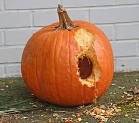 Nibbled Pumpkin