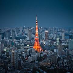 Tokyo tower night sky view