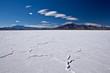 Zdjęcia na płótnie, fototapety, obrazy : USA - Bonneville salt flats