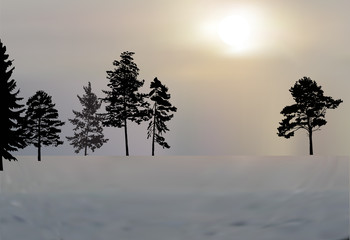 winter trees black silhouettes in snow landscape