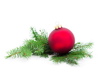 Christmas ball and green spruce branch, on white background