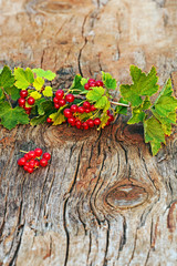 Red currant and green leaves on wooden background.