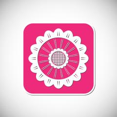 Flower icon. Pink square frame. Vector illustration