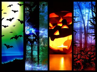 halloween pumpkin bats and forest -l mystic background