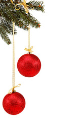 Christmas balls on fir branch.
