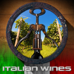 Italian Wines - Wooden Barrel
