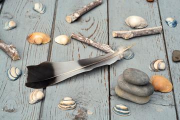 Schelpen op oud geverfd hout