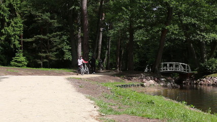Gravel path in the old park