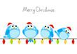 Obrazy na płótnie, fototapety, zdjęcia, fotoobrazy drukowane : Cute little birds with light bulbs