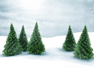 Winter scene snow and green pine trees