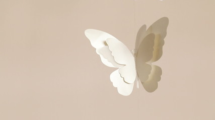 Single Paper butterflies