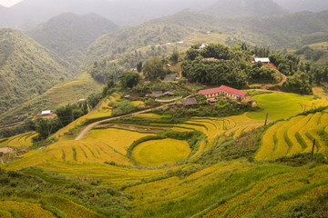 Agriculture school and rice terrace