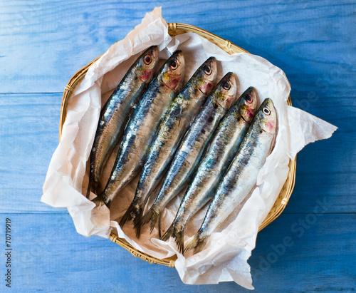 Aluminium Vis Fresh mediterranean sardines.
