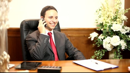 Smiling businessman talking on the phone