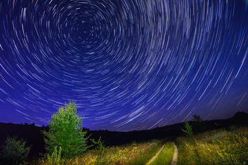 Alone tree on night sky with stars, startrails and country road