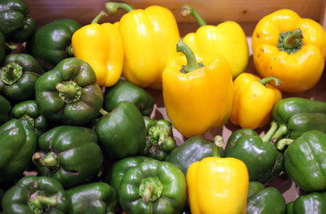 Green and yellow pepper