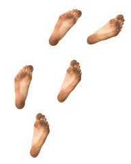 footprints on a white background