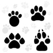Постер, плакат: Paws and Claws Print