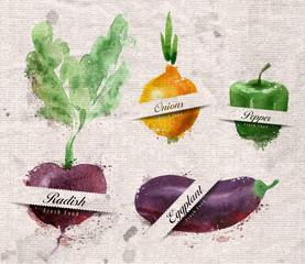 Vegetables. Vector format