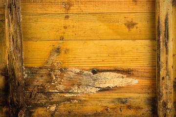 Holzwand verwittert