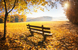 Herbstlandschaft mit Sonnenschein