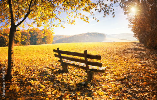 Foto op Aluminium Landschappen Herbstlandschaft mit Sonnenschein